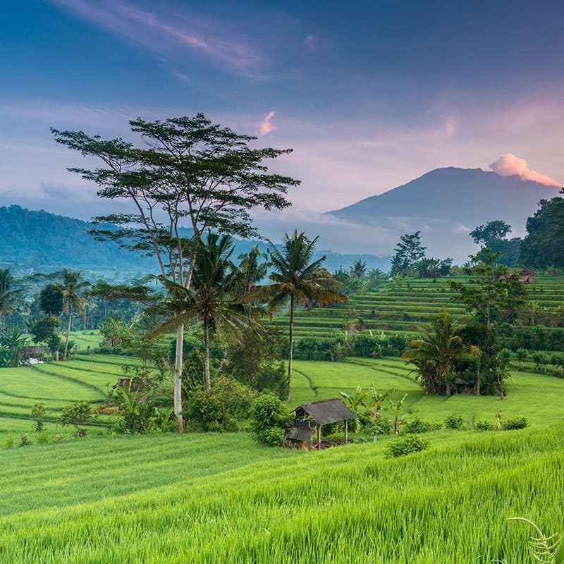 imagen destino Viajes Eurotrip Bidaiak: Indonesia-Viajes a Indonesia | Viajes a medida | Viajes Aventura | Eurotrip