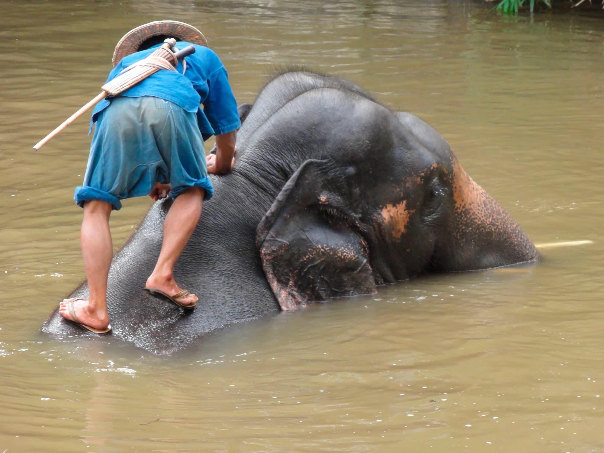 Tailandia del norte en hoteles boutique - Tailandia- imagen #7