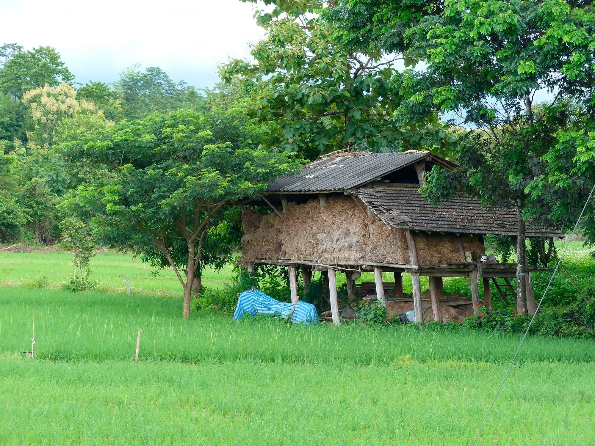 La nueva exploración de Thailandia - Tailandia- imagen #6