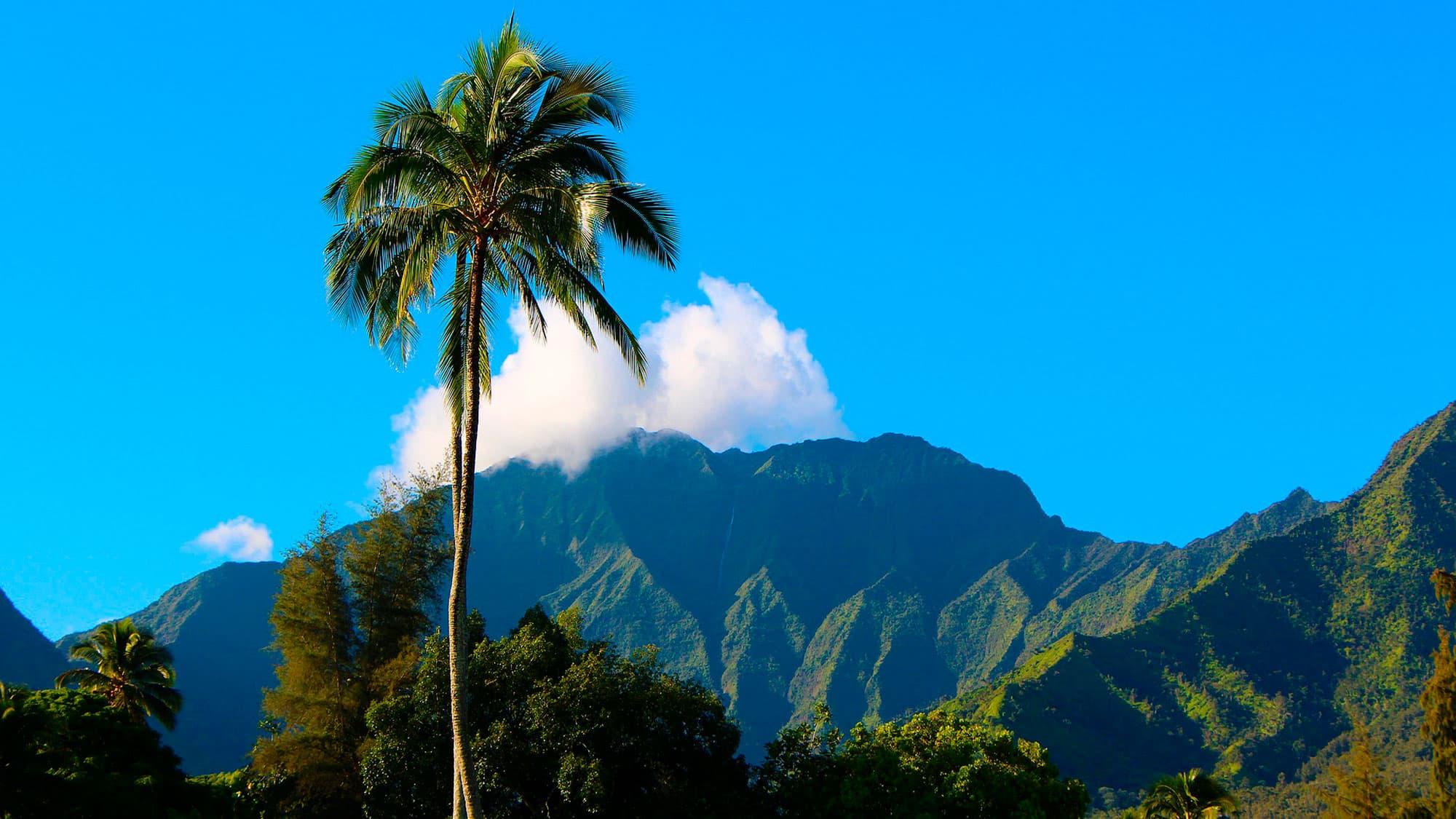 Lo mejor de Hawai - EEUU- imagen #3