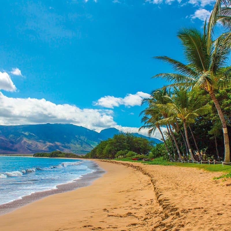 Viajes a medida | Lo mejor de Hawai-de novios