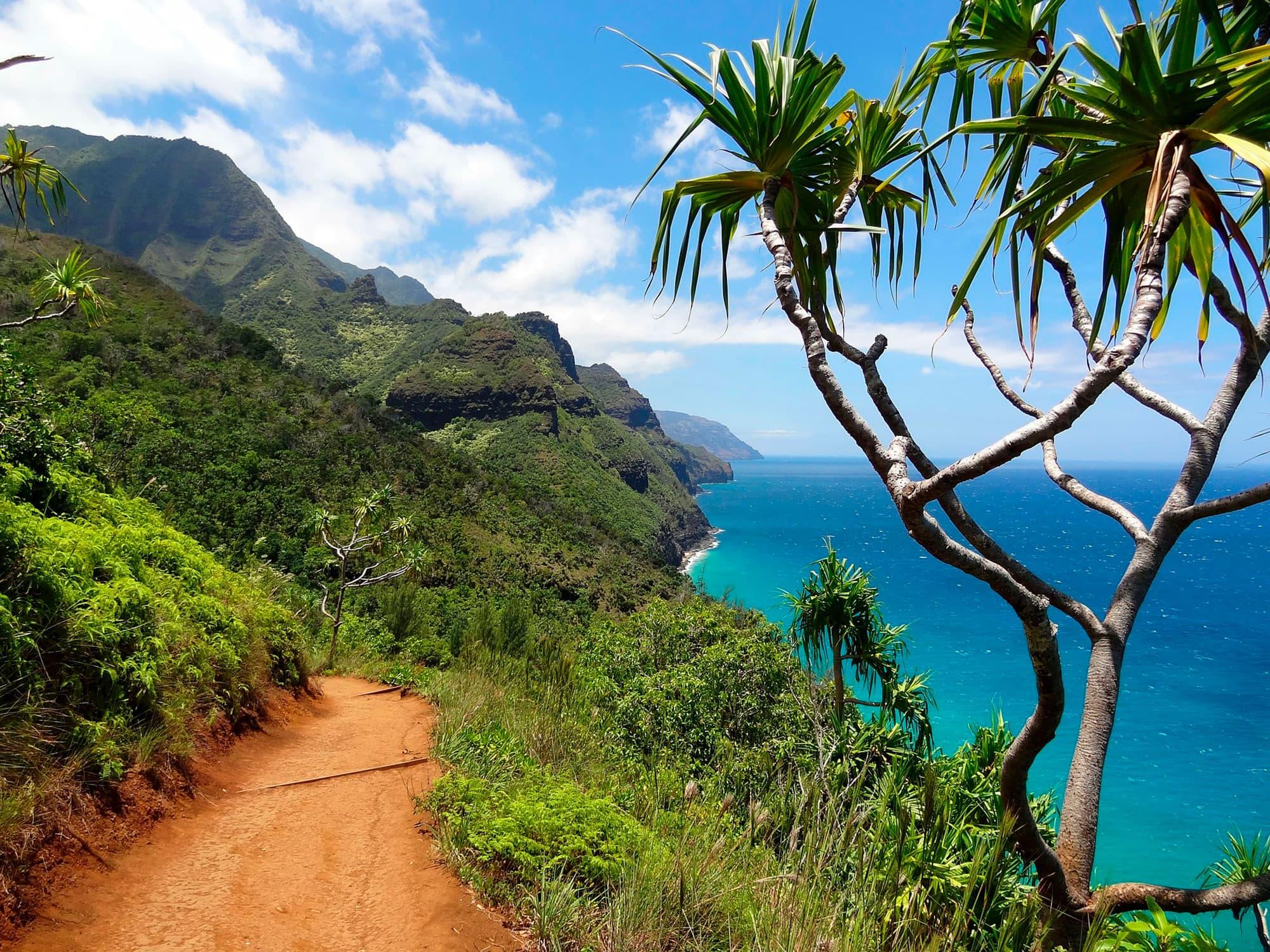 Lo mejor de Hawai - EEUU- imagen #5