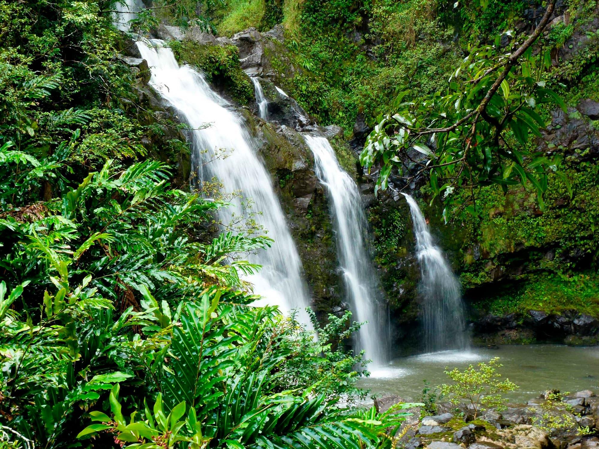 Lo mejor de Hawai - EEUU- imagen #9