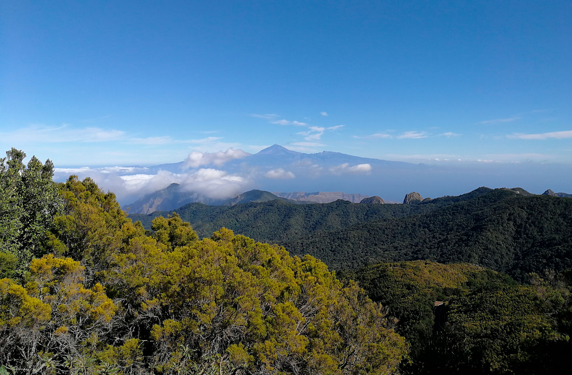 Naturaleza mágica, paisajes increibles, Islas Canarias - España- imagen #1