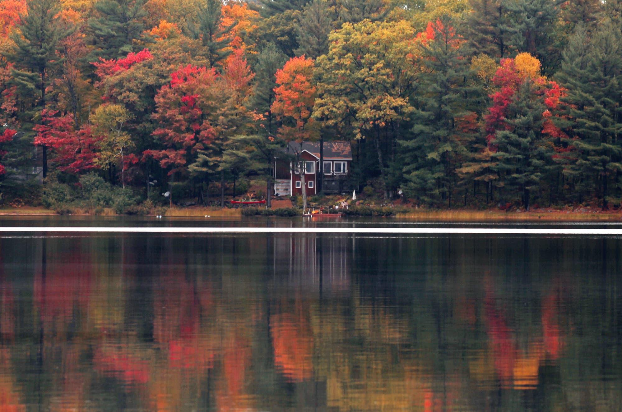 Costa Oeste: Parques Nacionales en libertad - Canadá- imagen #3