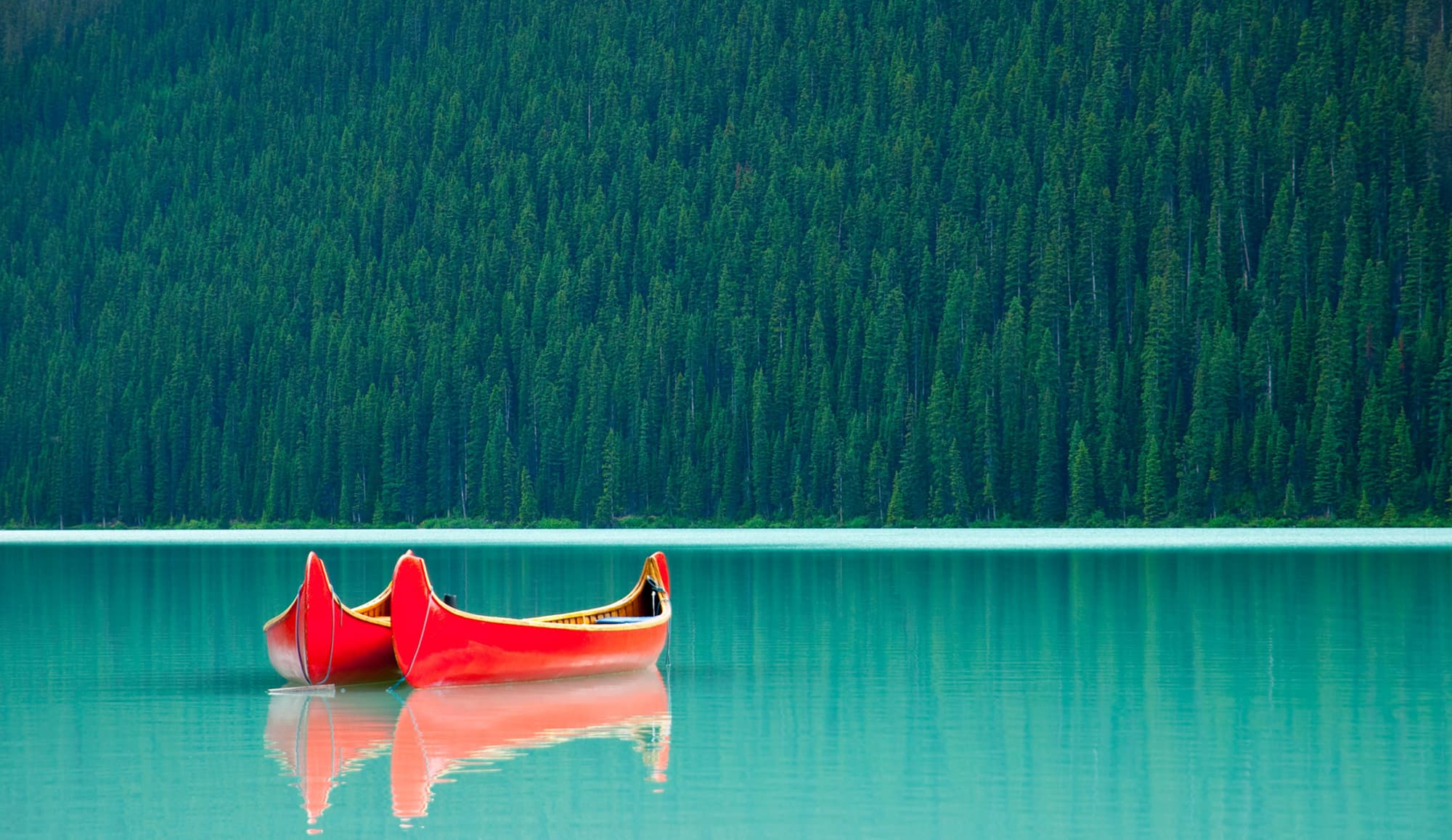 Costa Oeste: Parques Nacionales en libertad - Canadá- imagen #6