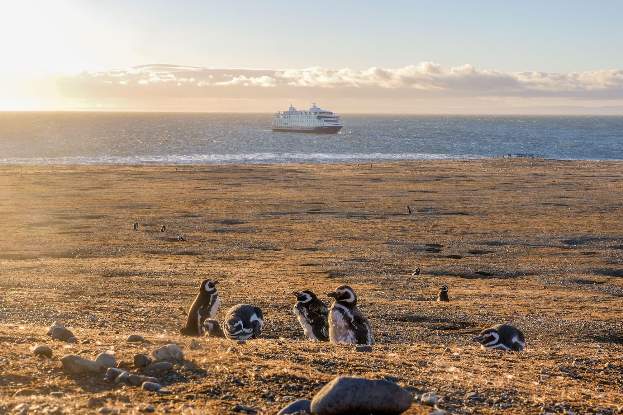 Crucero: Fiordos de Tierra del Fuego - Punta Arenas - Ushuaia - Argentina- imagen #9