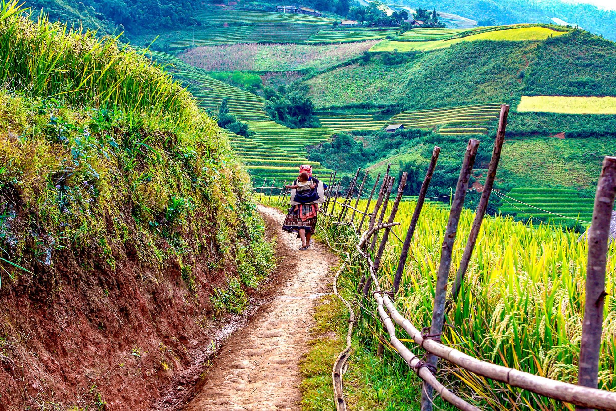 Vietnam Clásico con Sapa - Vietnam- imagen #7