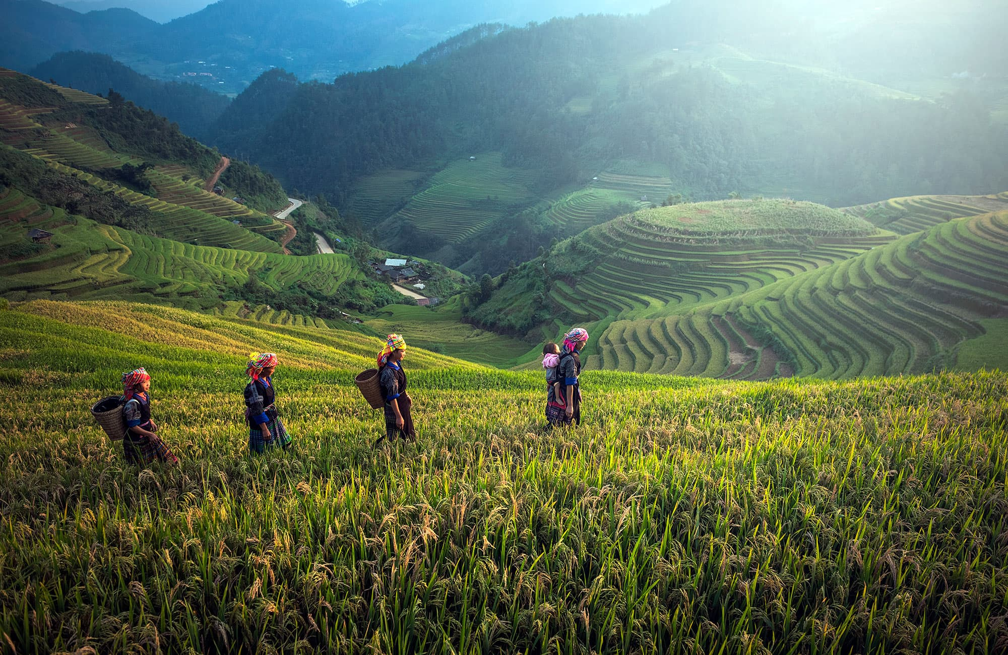 Vietnam Clásico con Sapa - Vietnam- imagen #8