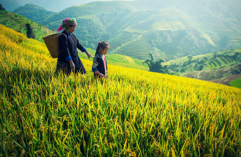 Viaje a tu aire: Vietnam en moto | Viajes Eurotrip