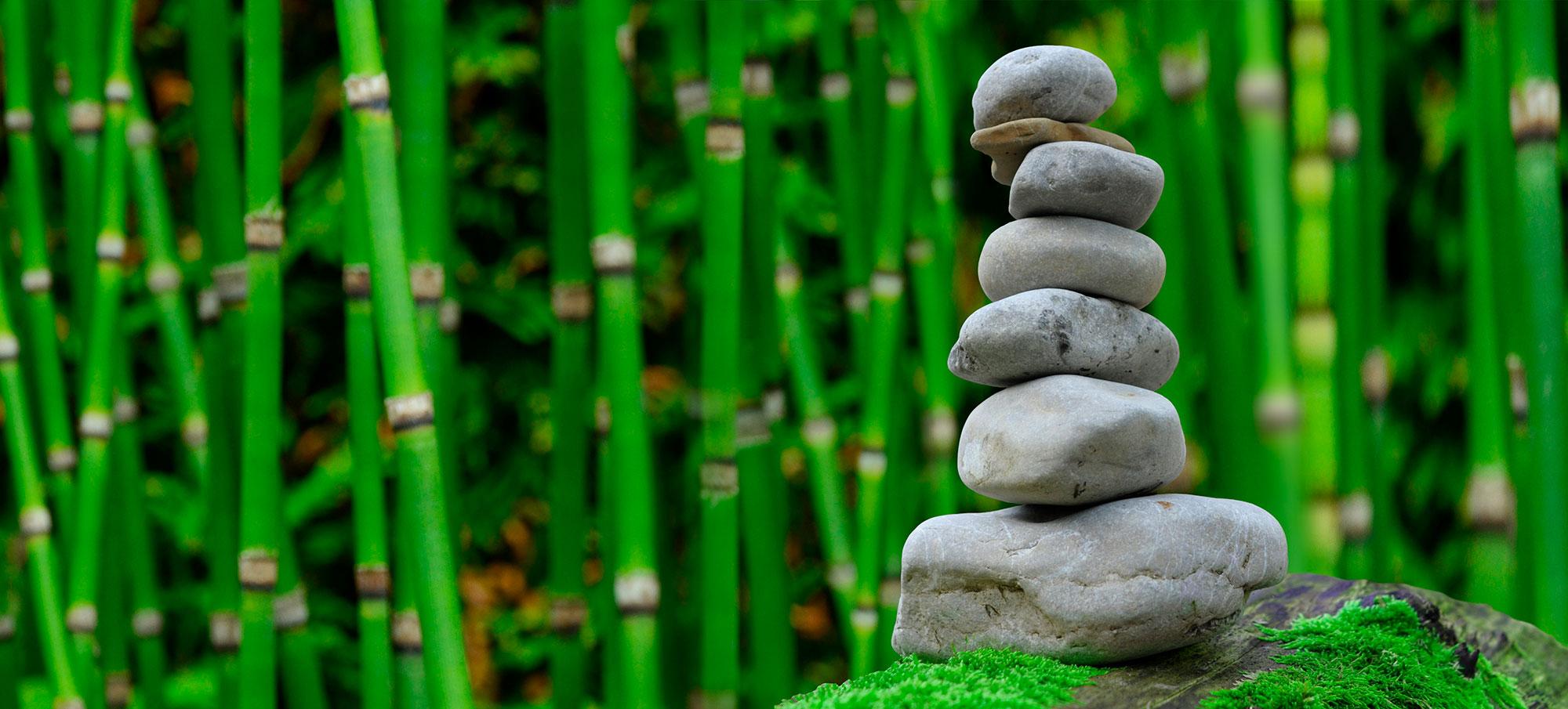 Cultura y Espiritualidad japonesa - Japón- imagen #7