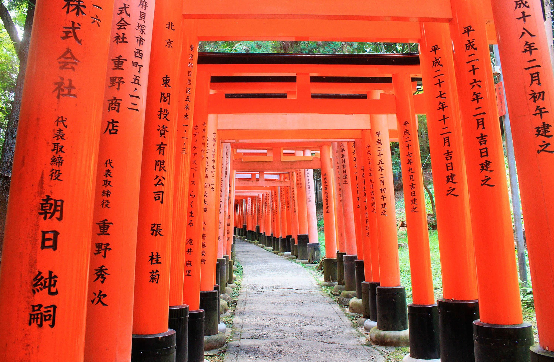 Viaje a Japón 日本: Samurais y Geishas (9 noches) | Eurotrip