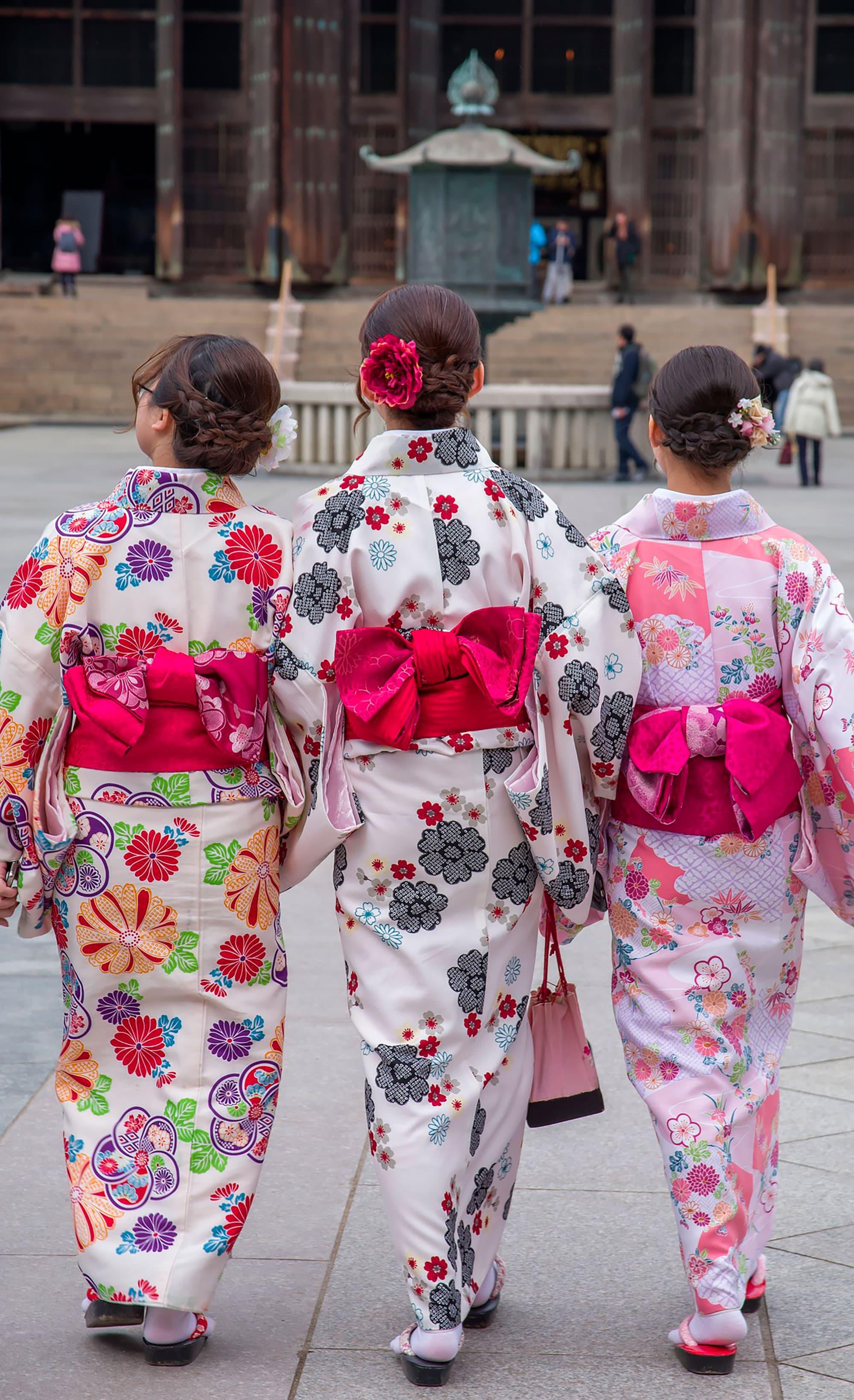 Geishas y Samurais - Japón- imagen #4