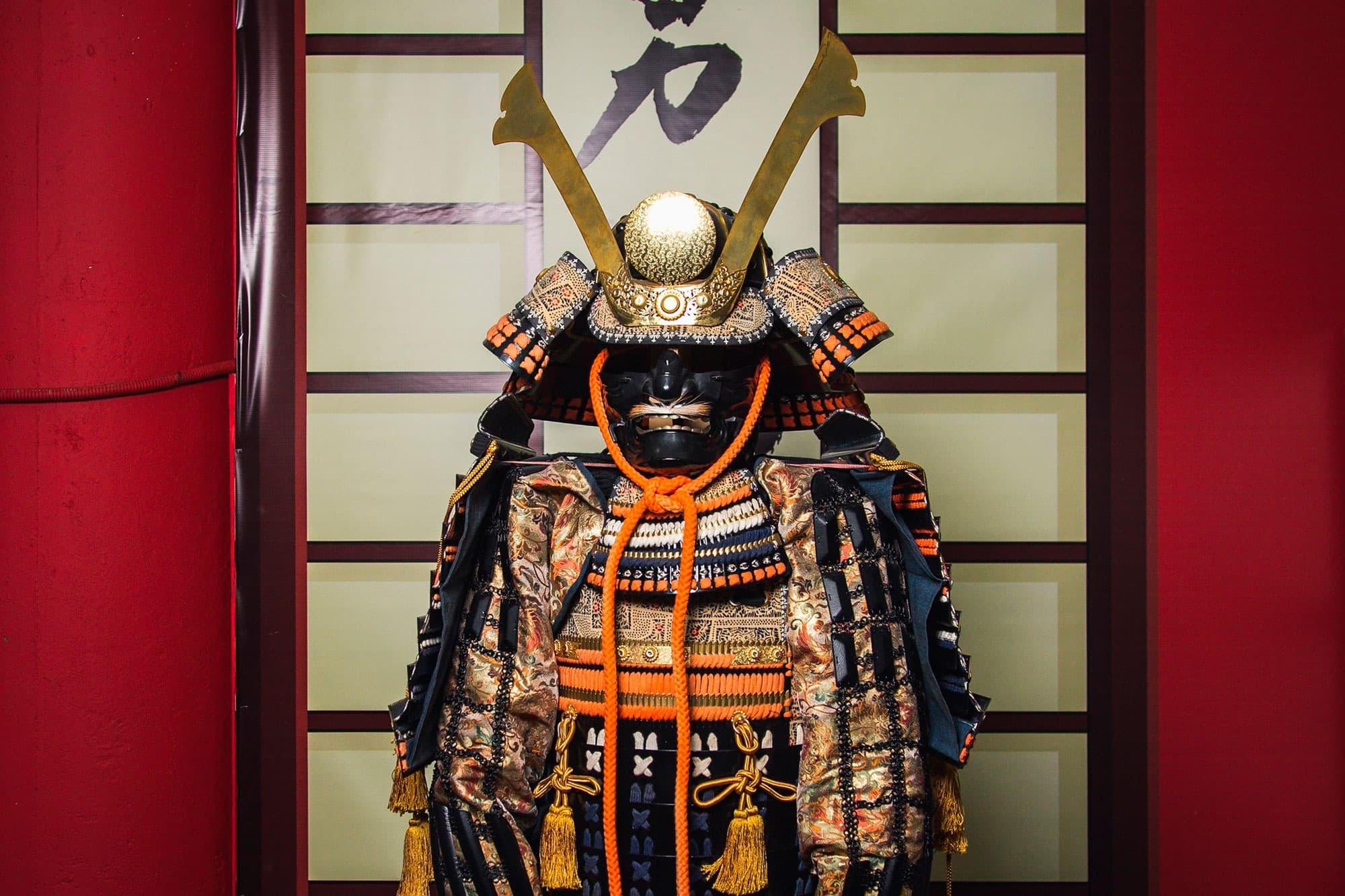 Geishas y Samurais - Japón- imagen #6