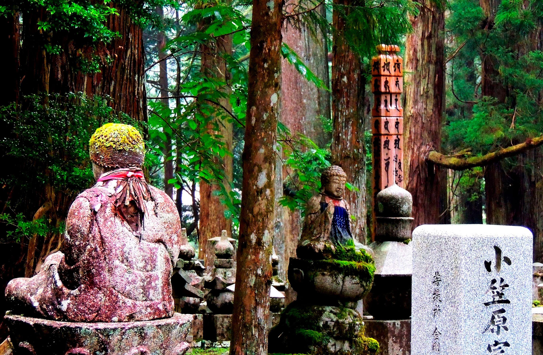 Viaje a Japón 日本: Camino de Kumano II | Eurotrip