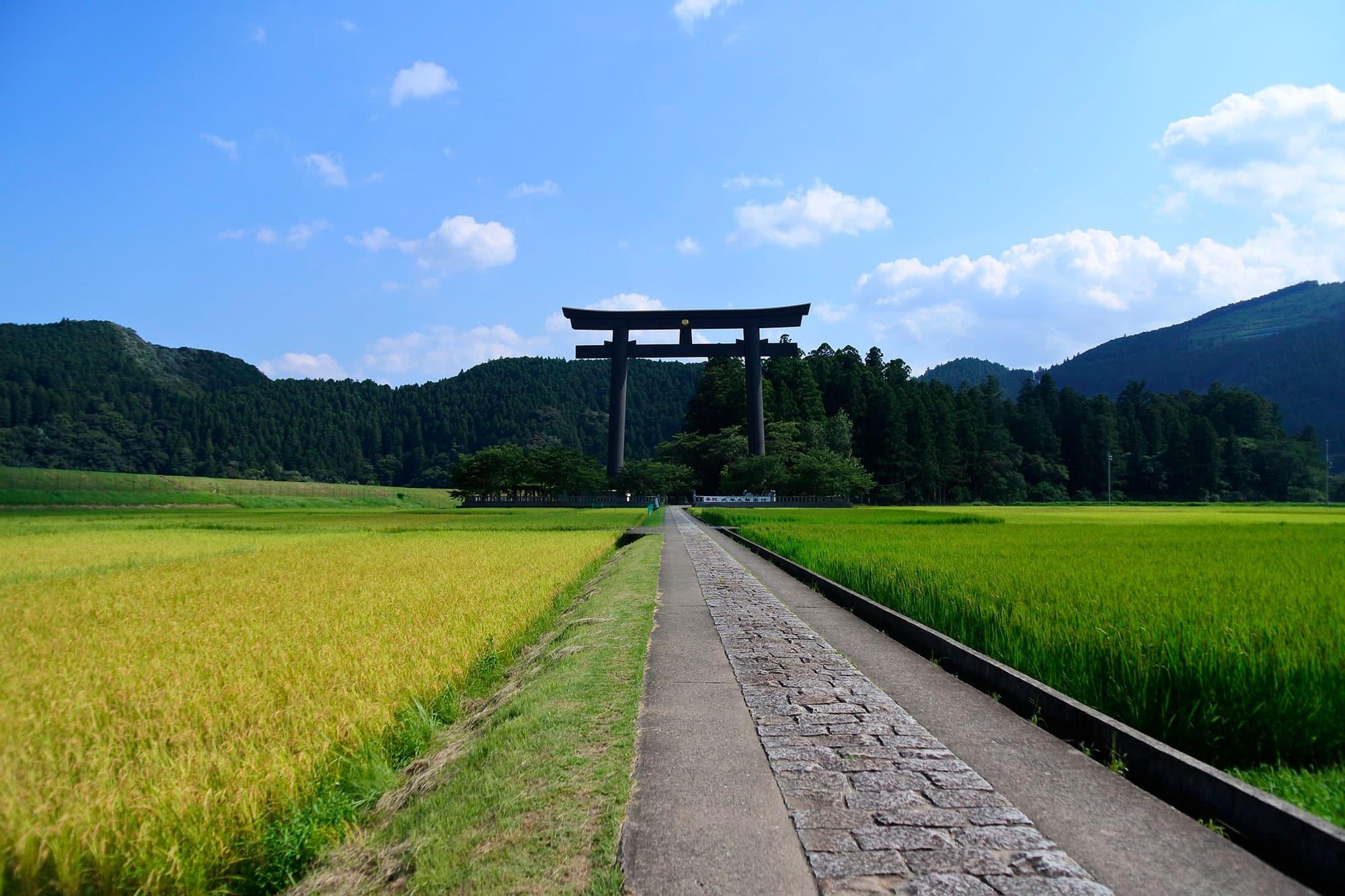 Kumano II - Japón- imagen #6