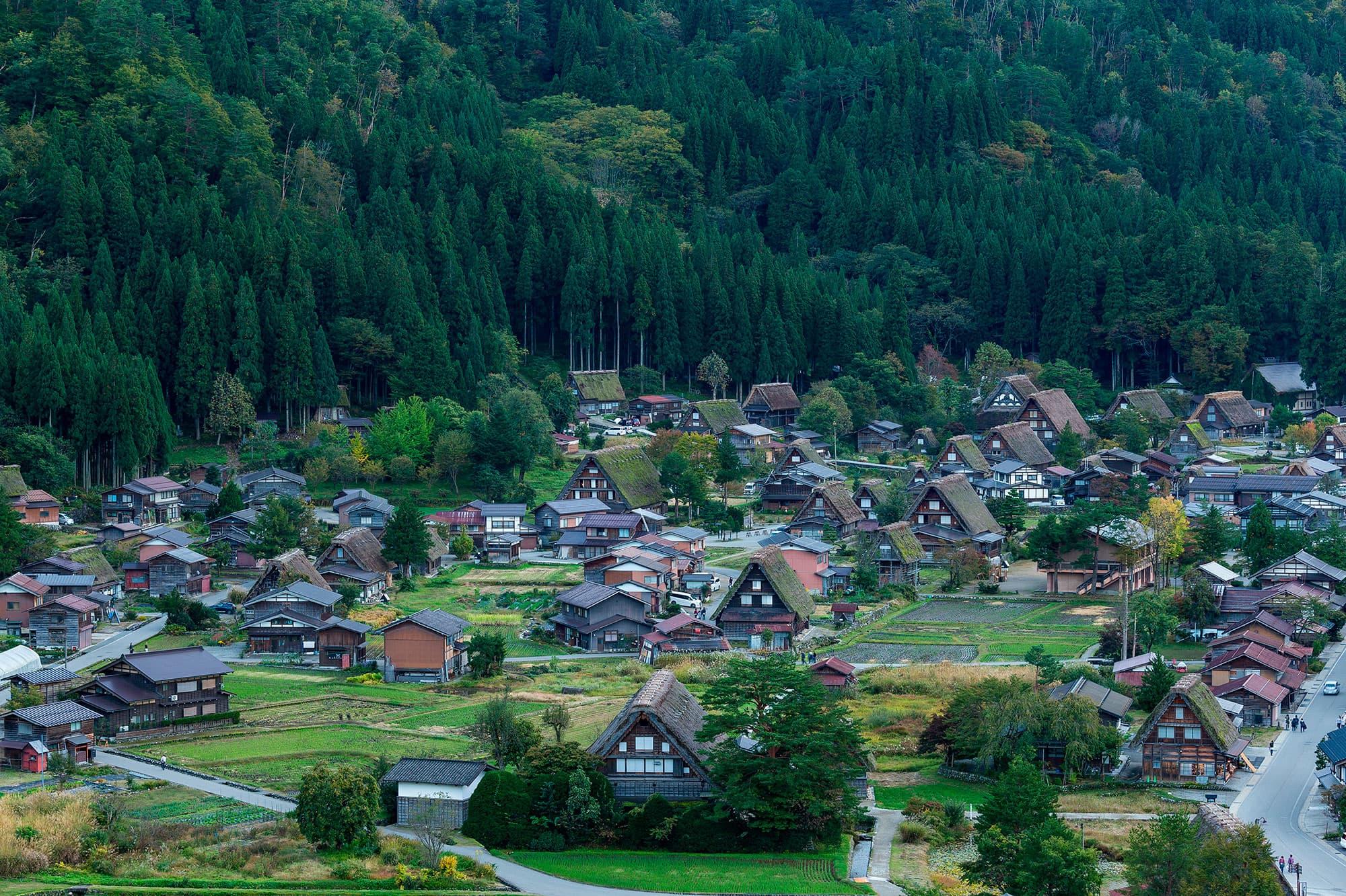 Camino de Kumano - Japón- imagen #1