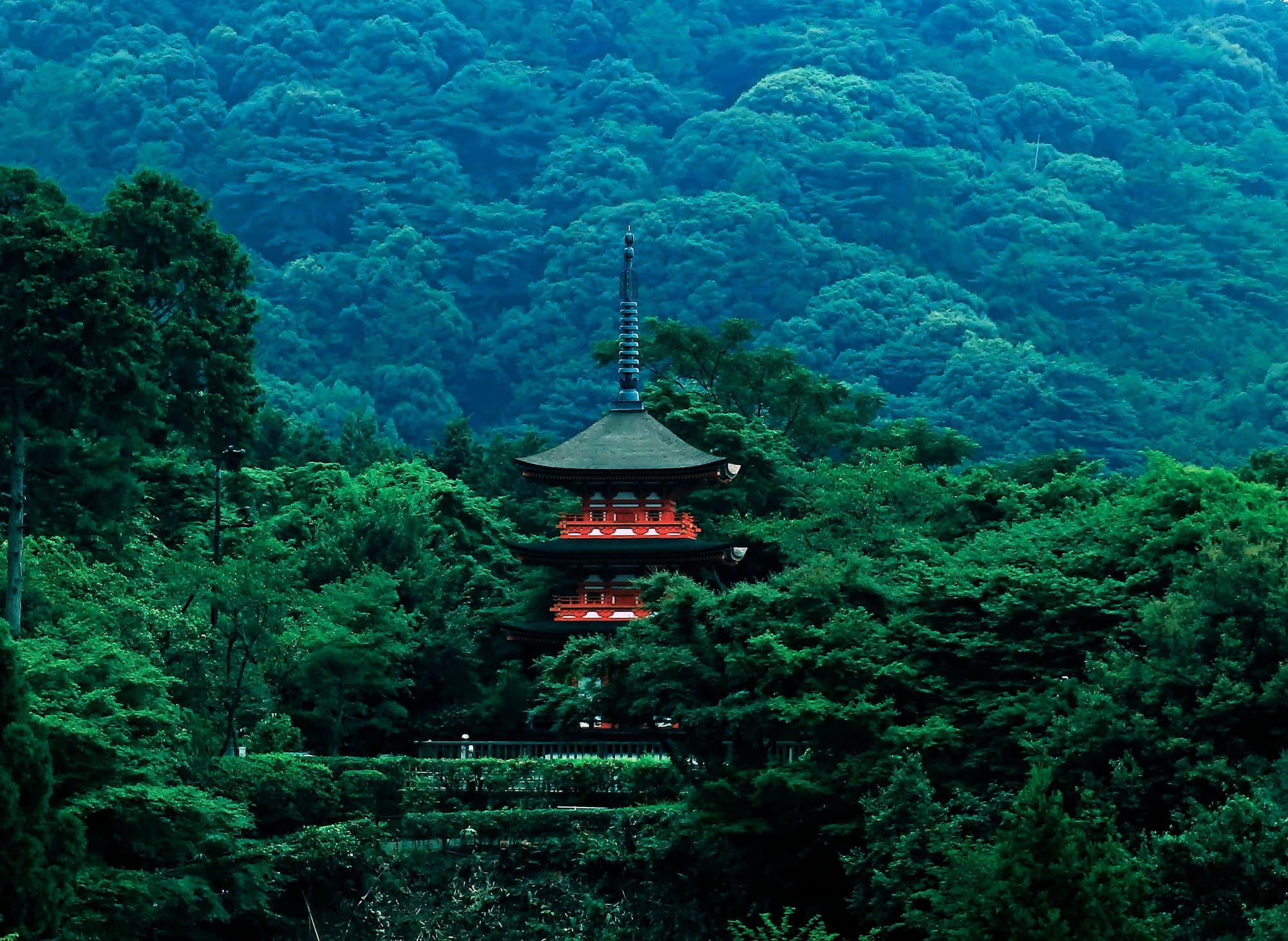Camino de Kumano - Japón- imagen #6