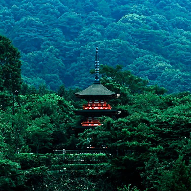 Viaje a medida: Camino de Kumano-Japón