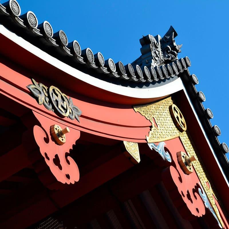 Viaje a medida: Semi Organizado II-Japón