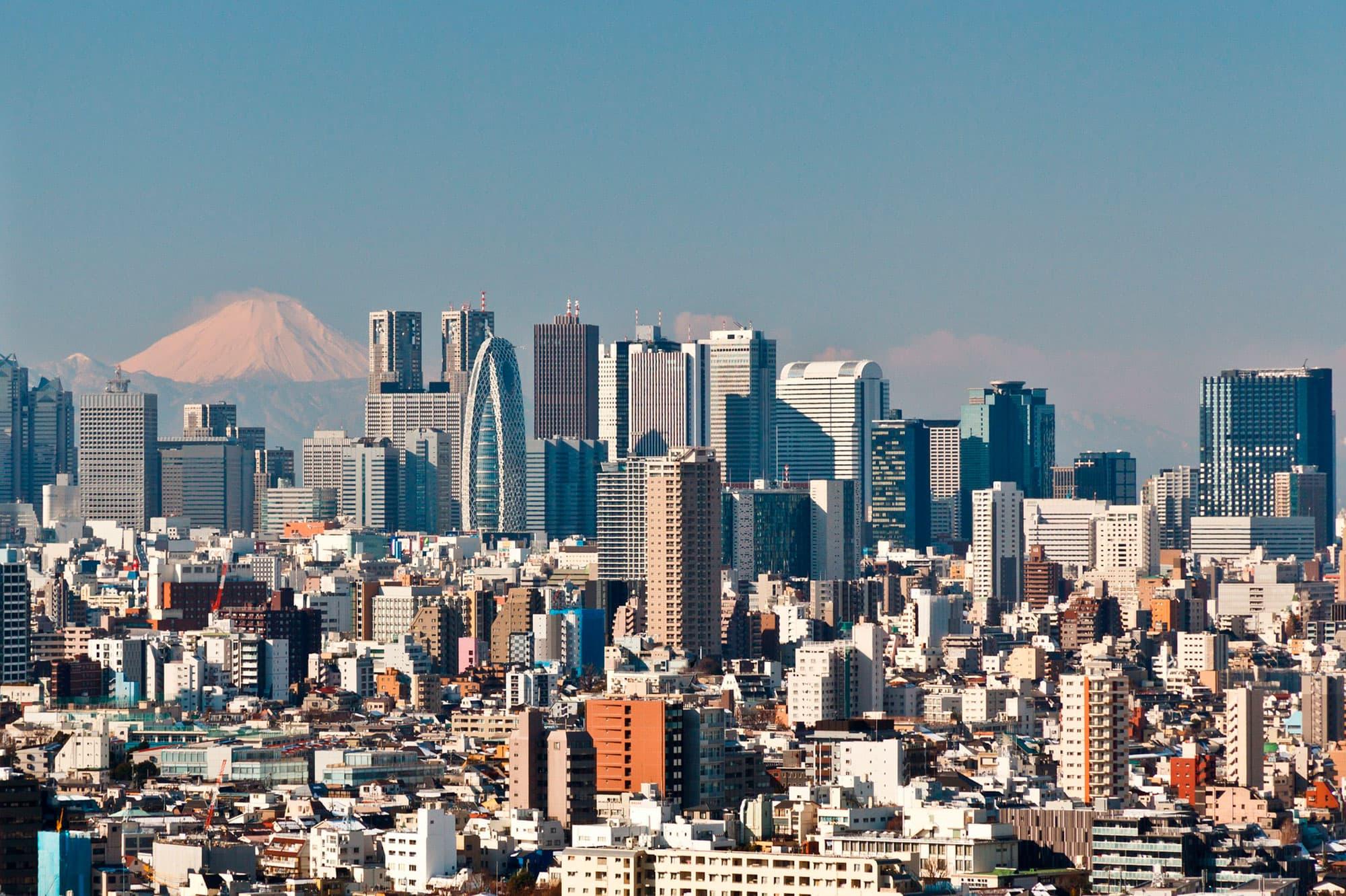 Semi Organizado II - Japón- imagen #7