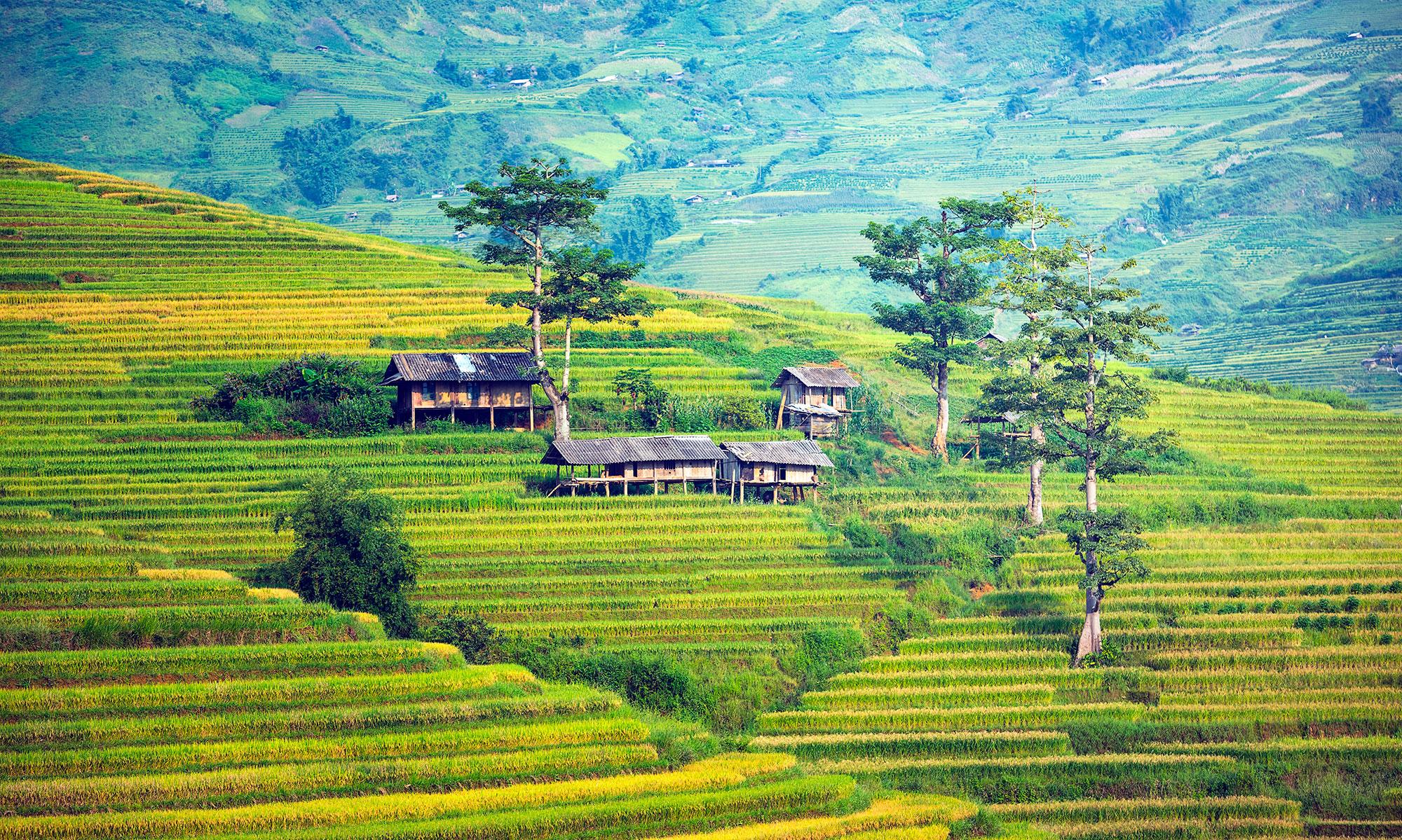 Aventura y Naturaleza en Bali - Indonesia- imagen #4