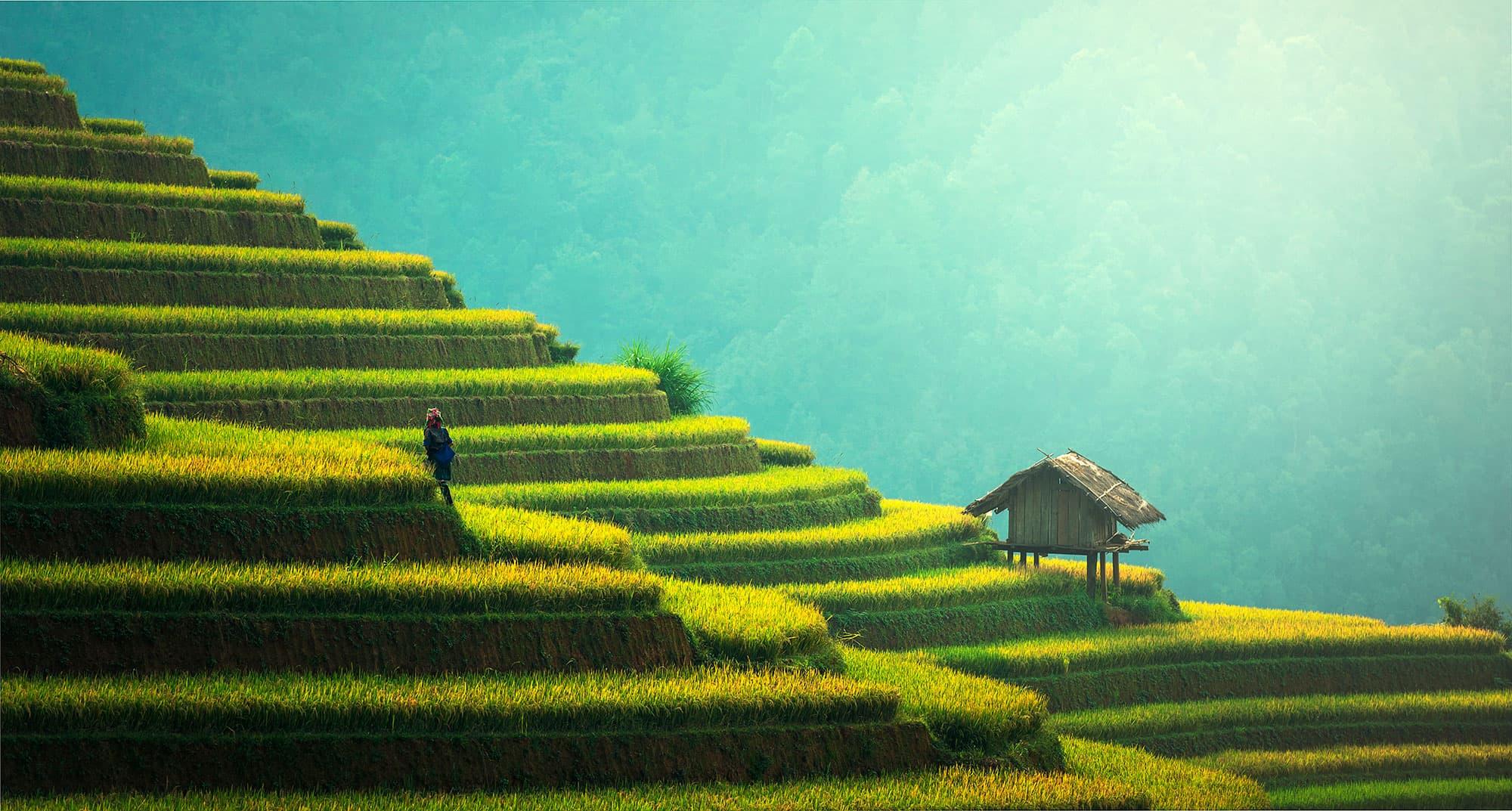 Borneo, Java y Bali - Indonesia- imagen #3