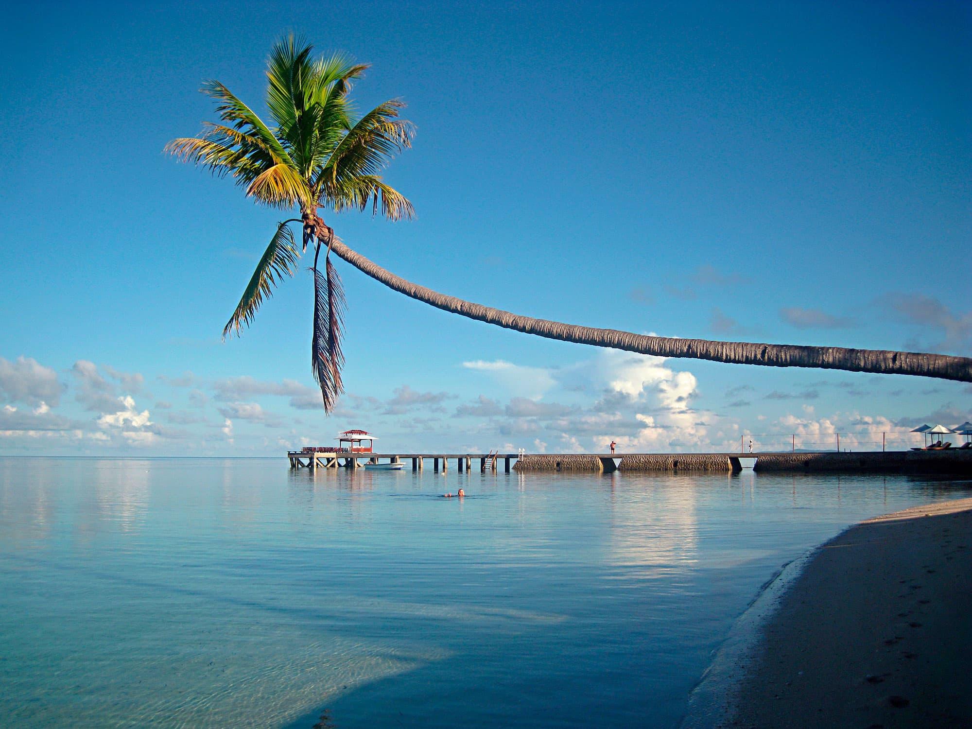 Borneo, Java, Sulawesi, Komodo y Bali - Indonesia- imagen #5
