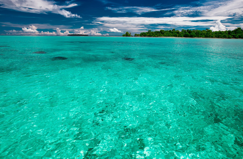 Viaje organizado a Borneo, Komodo y Bali |  Viajes Eurotrip