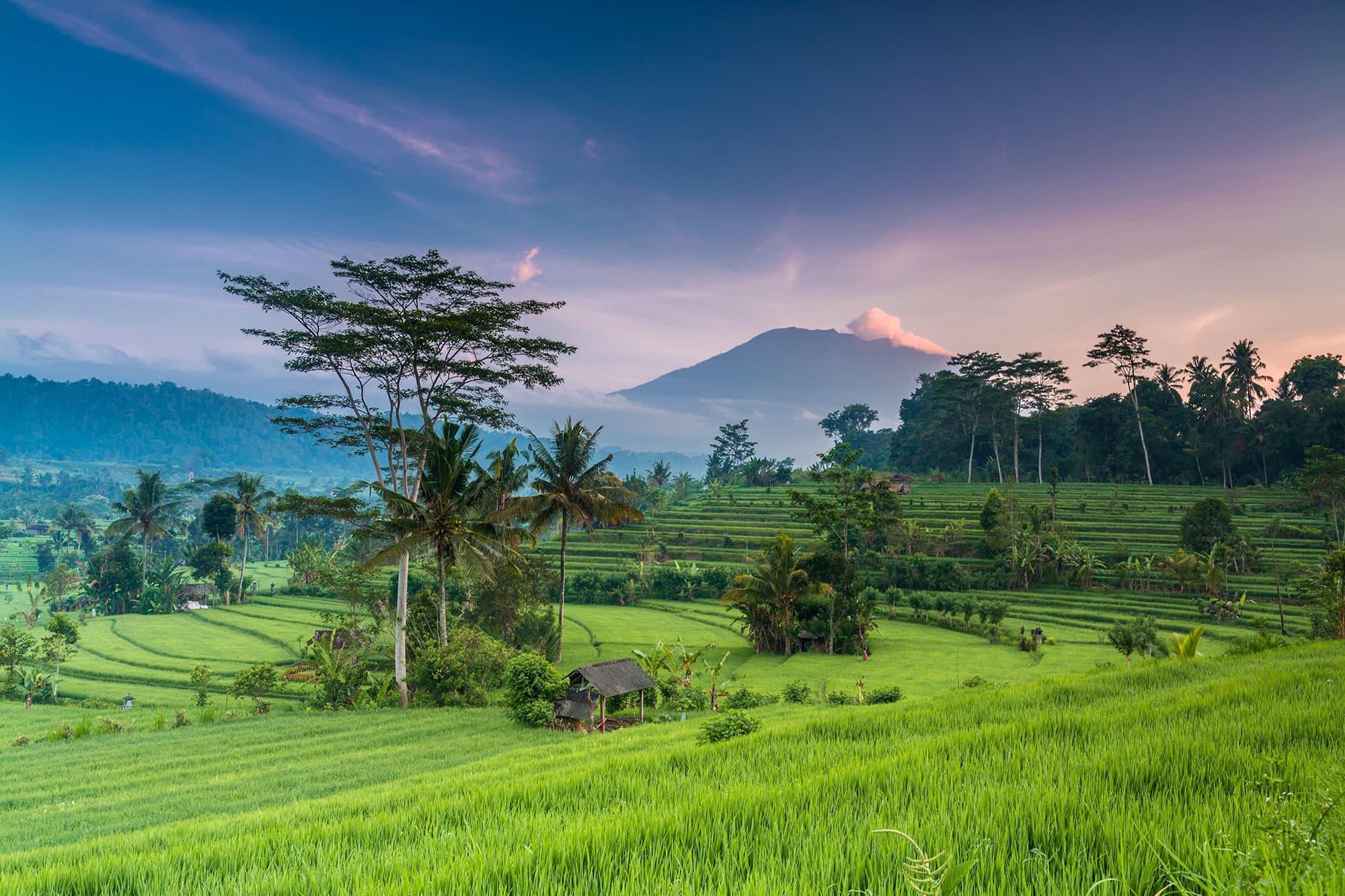 Java, Sulawesi y Bali - Indonesia- imagen #5