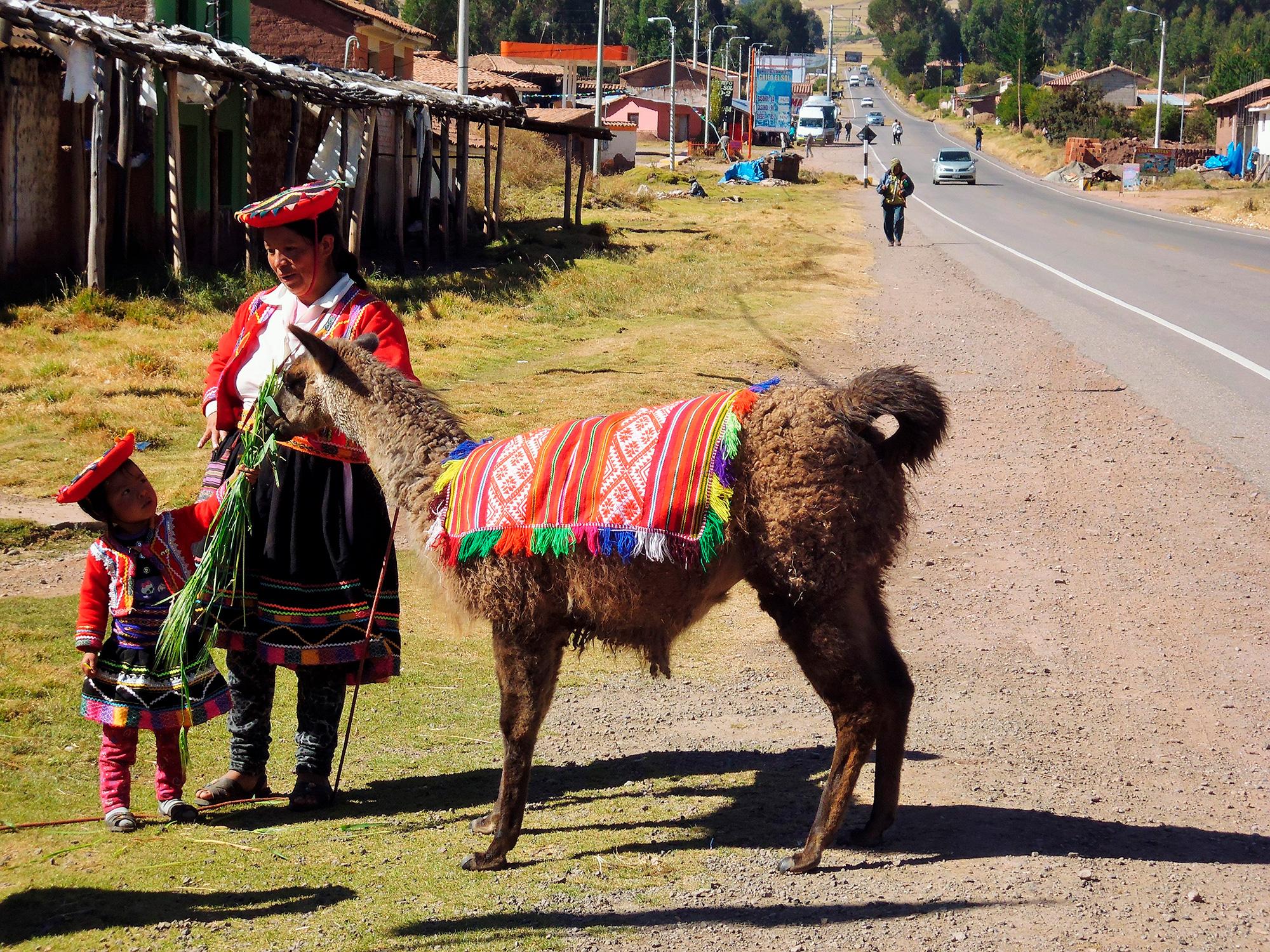 De Nazca a Machu Picchu - Perú- imagen #6