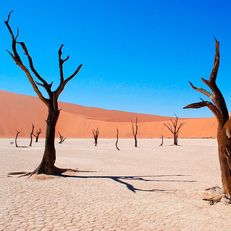 imagen noticia: Curiosidades de Namibia