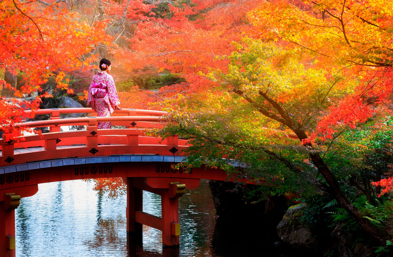 Blog Viajes Eurotrip Bidaiak: Momiji en JAPÓN. Una época muy especial para viajar.