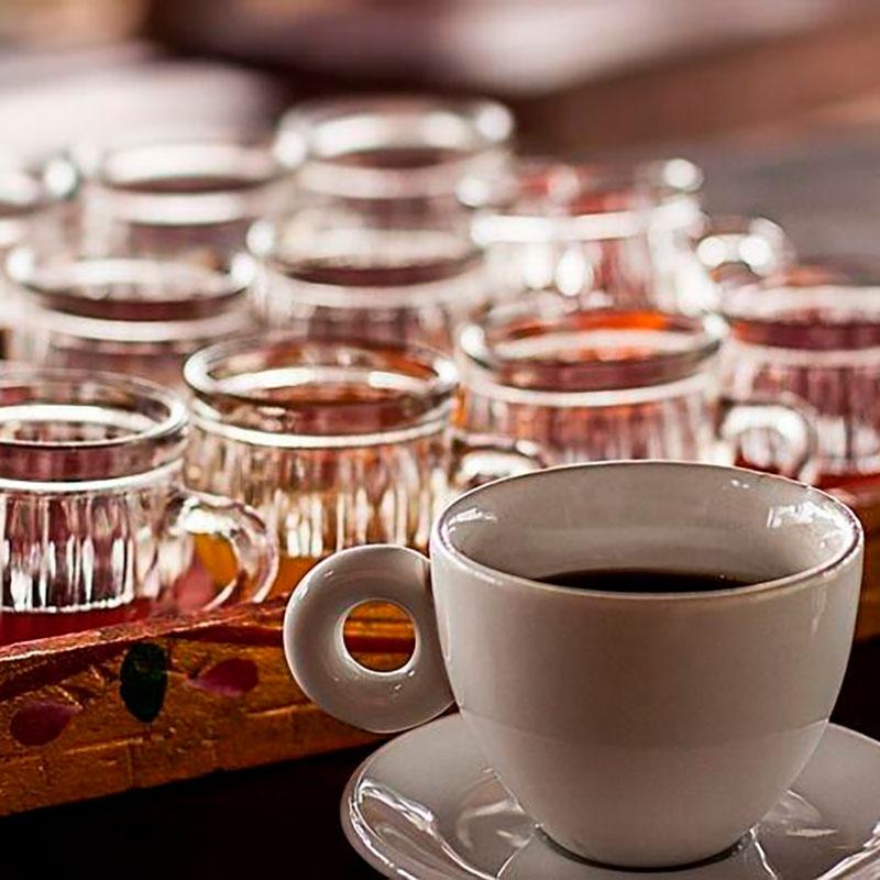 imagen noticia: KOPI LUWAK, el café más caro del mundo
