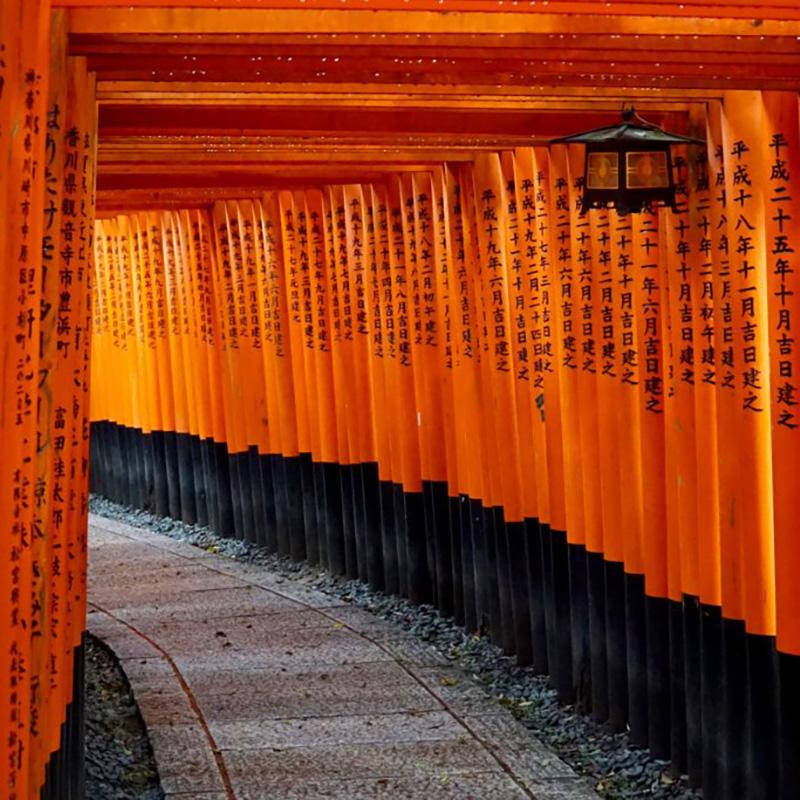 imagen noticia: Viaje en grupo a Japón 2015